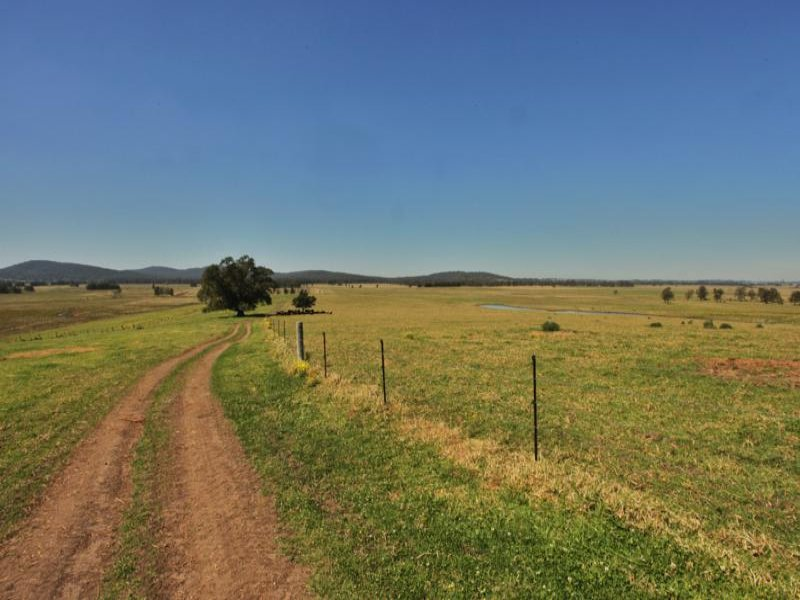 Address available on request, Nelsons Plains, NSW 2324