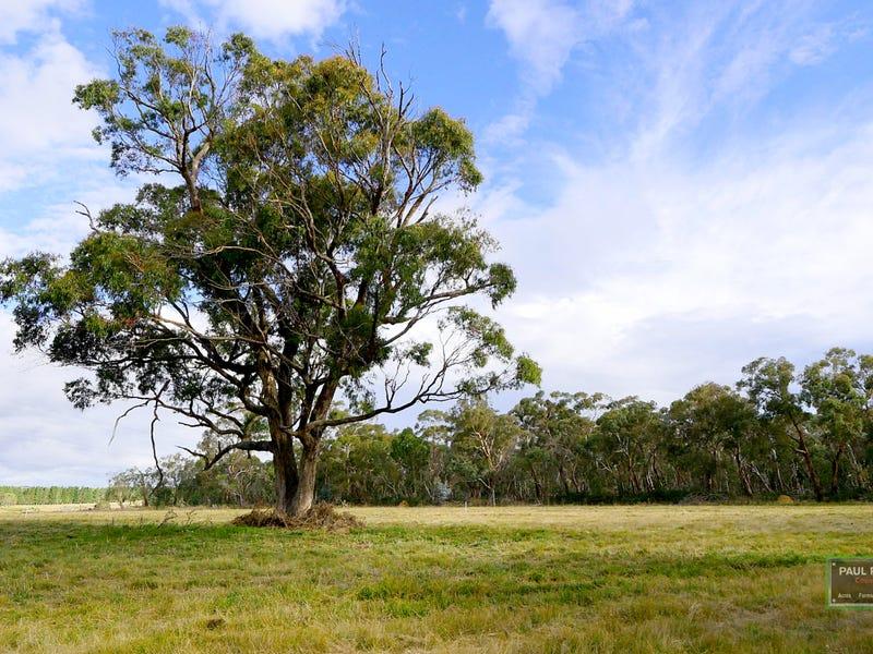 78, Thompson Creek Road, Wallerawang, NSW 2845