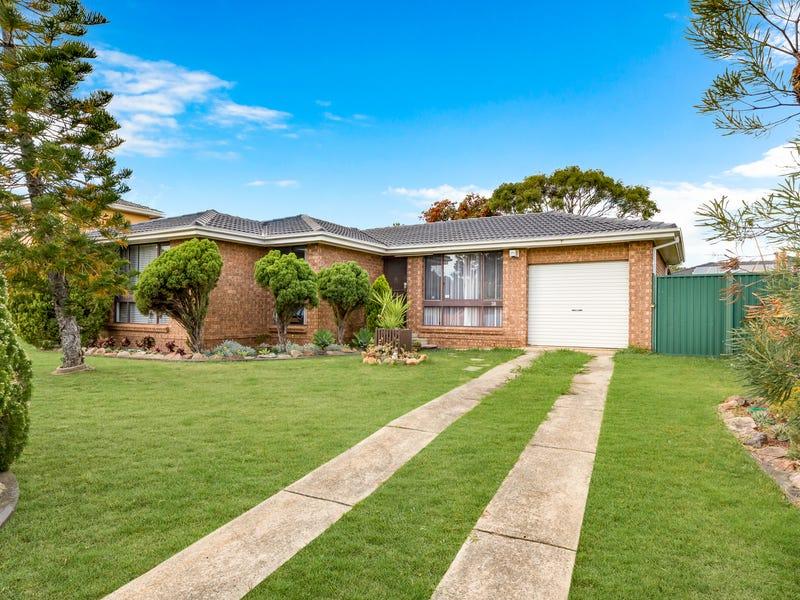 38 Adrian Street, Macquarie Fields, NSW 2564