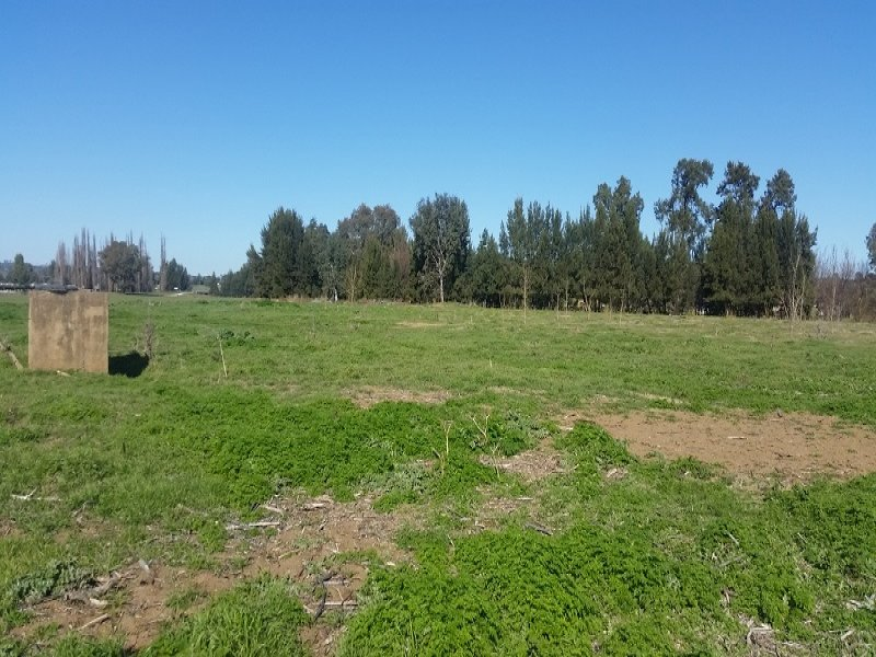Lot 3 Icely Road, Canowindra, NSW 2804