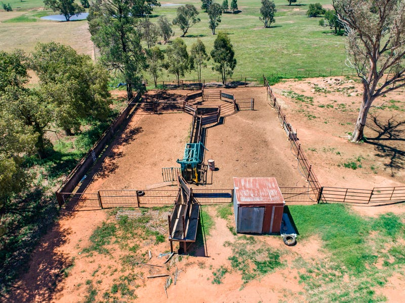 'Pine Park' Eulimore Road, Eugowra, NSW 2806