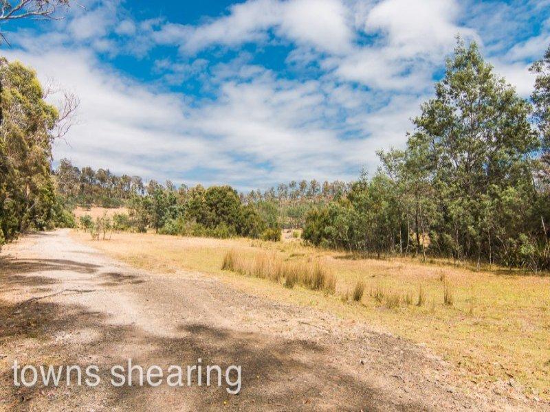 141 Maneys Road, Bridgenorth, Tas 7277