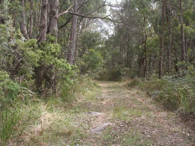 Lot9. DP862049 Aqua Park Road, Mount Mitchell, NSW 2365
