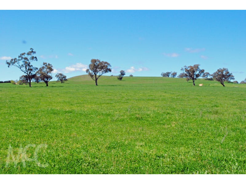 Lot 1 & 4, Mouse Hole Lane, Boree, NSW 2800