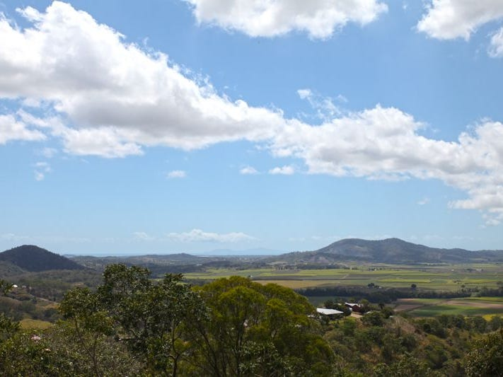 Lot 41, 187 Ian Reddacliffe Drive, The Leap, Qld 4740
