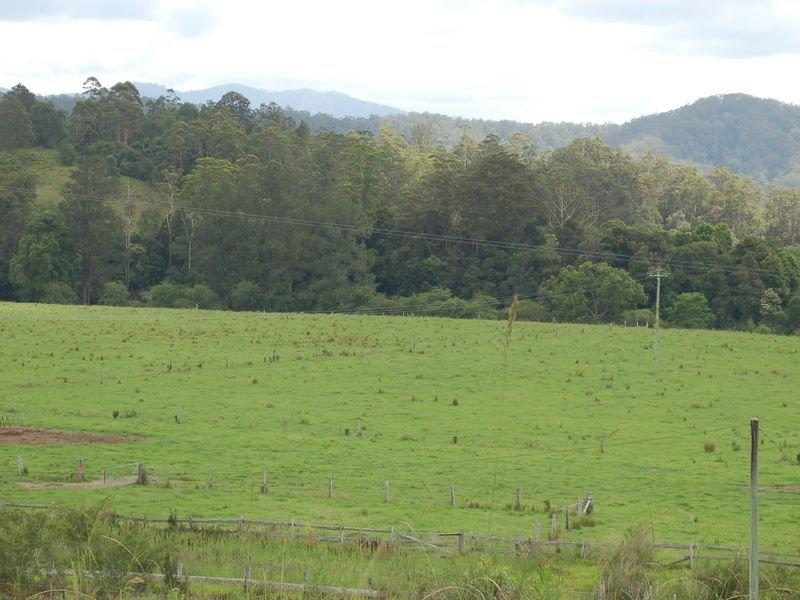 1343 Kalang Road, Kalang, NSW 2454