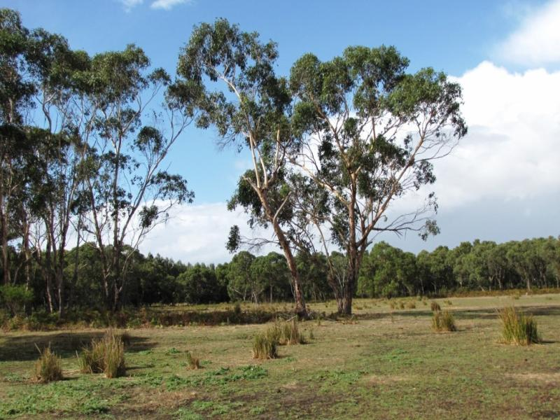 Lot 2 Mumbannar - Wanwin Road, Mumbannar, Vic 3304
