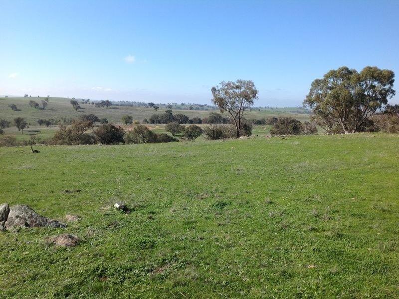1437 Dirnaseer Road, Cootamundra, NSW 2590