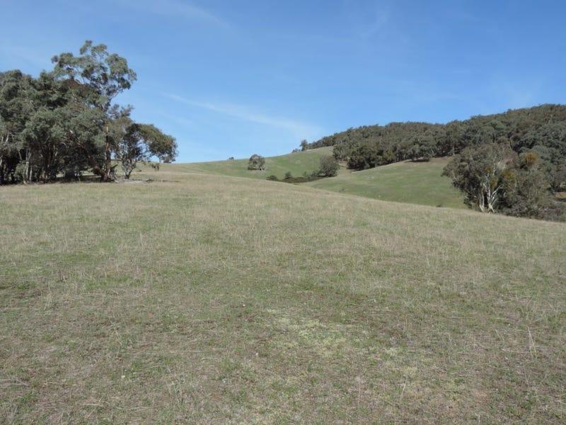 671 Bridge Creek Road, Binda, NSW 2583
