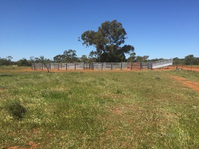 . Illewong, Euabalong, NSW 2877