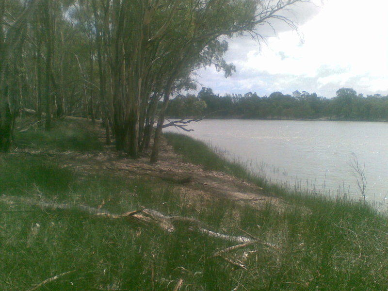 Lot 1 BOEILL CREEK ROAD, Boeill Creek, NSW 2739