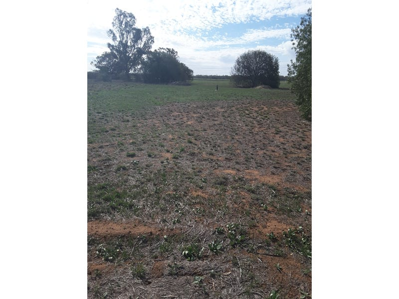 Lot 3 & 12, National Park Rd, Curban, NSW 2827