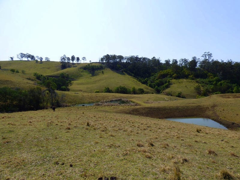 Proposed Lot A Woodlands Lane, Bald Hills, NSW 2549