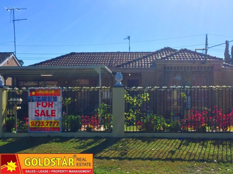 28  Doris Pl, Emerton, NSW 2770