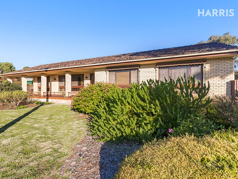 14 Canberra  Drive, Aberfoyle Park, SA 5159