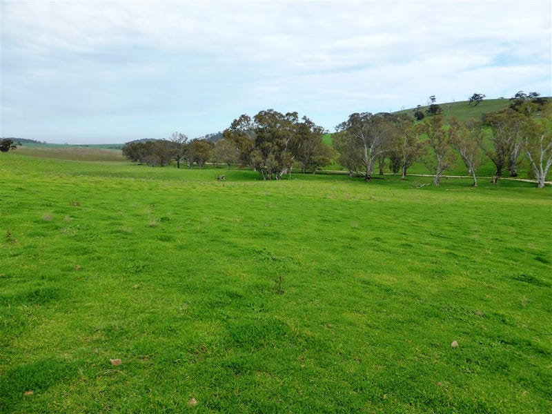 Sect 478 Upper Skilly Road, Watervale, SA 5452