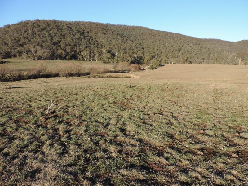 Lot 39 Middle Arm Road, Middle Arm, NSW 2580