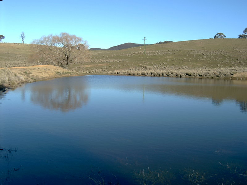 Lot 5, Lake Bathurst, NSW 2580