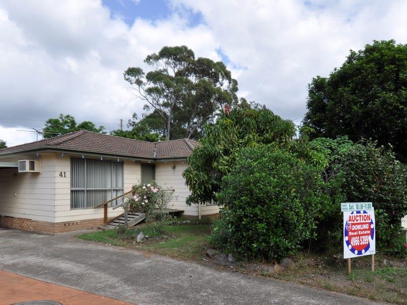 41 Sapphire Drive, Tarro, NSW 2322
