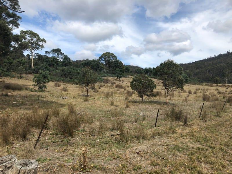 345 Springhill Bottom Road, Colebrook, Tas 7027