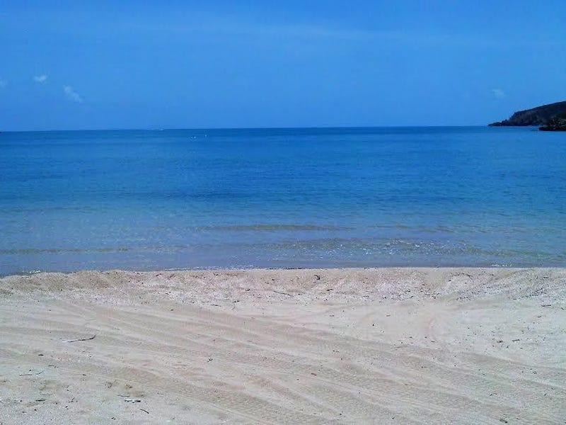 ** St. Bees Island, Whitsundays, Qld 4802