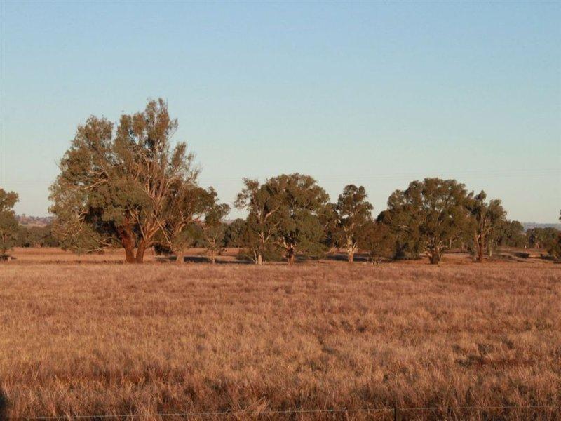 West Meadows, 6 Gregadoo-Ladysmith Road, Gregadoo, NSW 2650