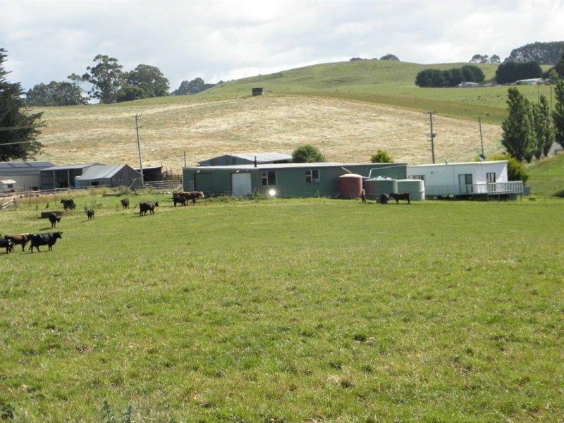249 Camena Road, Natone, Tas 7321