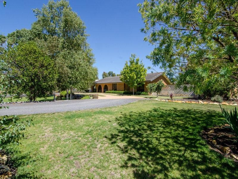 584 BUCHANAN ROAD, Worrolong, SA 5291