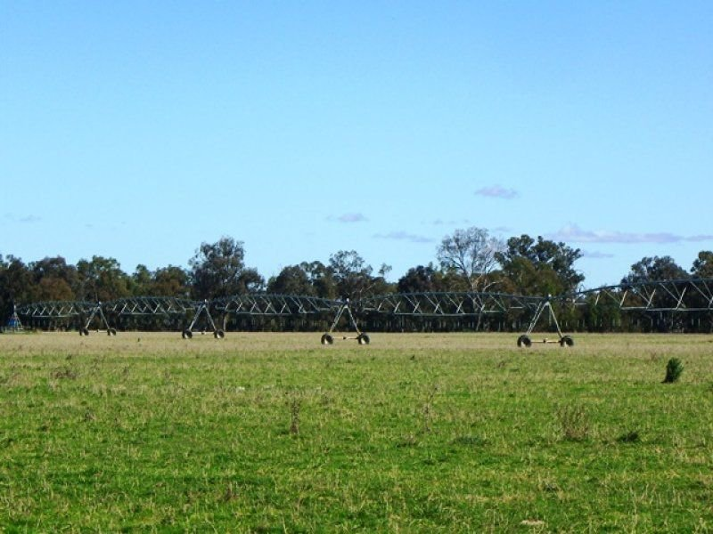 405 Culcairn-Holbrook Road, Morven, NSW 2660