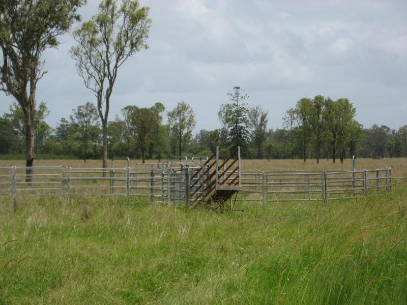 Perkins Bridge Road, Tatham, NSW 2471