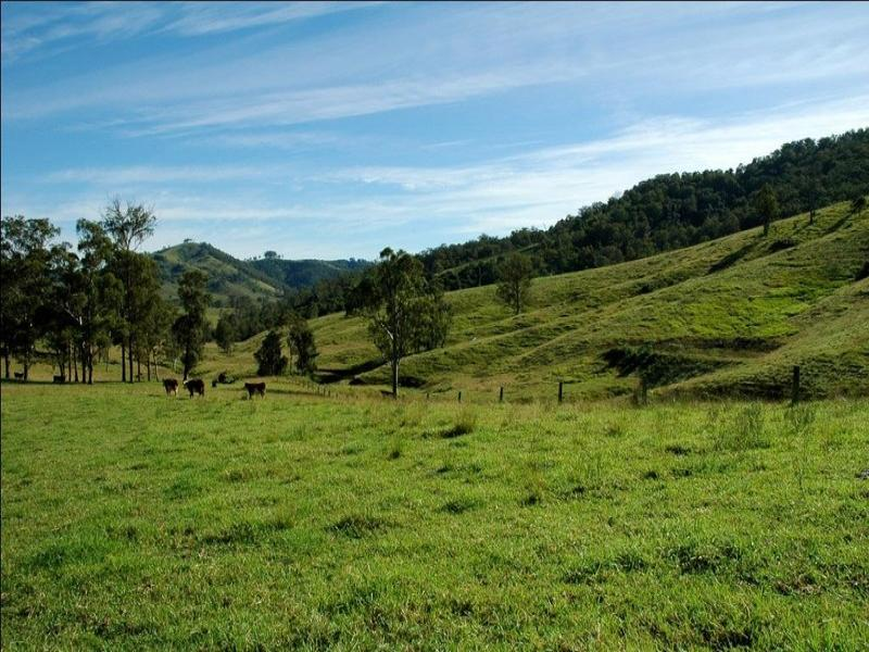 Lot 3 Bakers Creek Road, Bakers Creek, NSW 2422