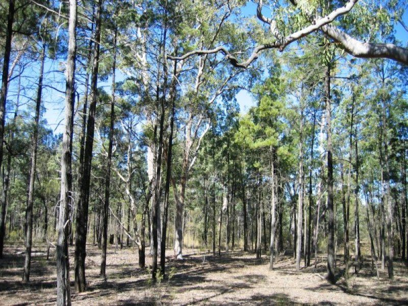 Lot 1, 247 Bennetts School Road, Wieambilla, Qld 4413