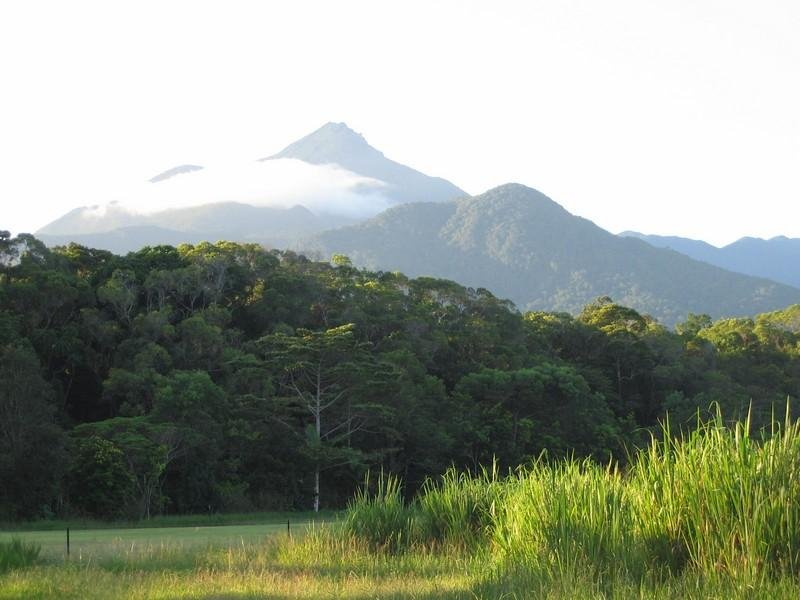 LOT 551 Cape Tribulation Road, Cow Bay, Qld 4873