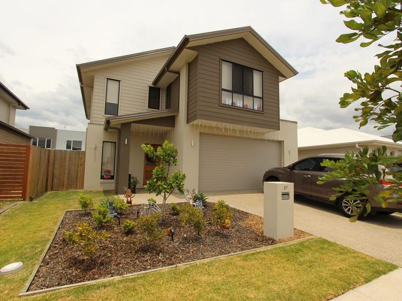 37 Tasmania Avenue, Newport, Qld 4020