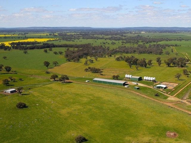 449 Willawang Road, Warroo, NSW 2871