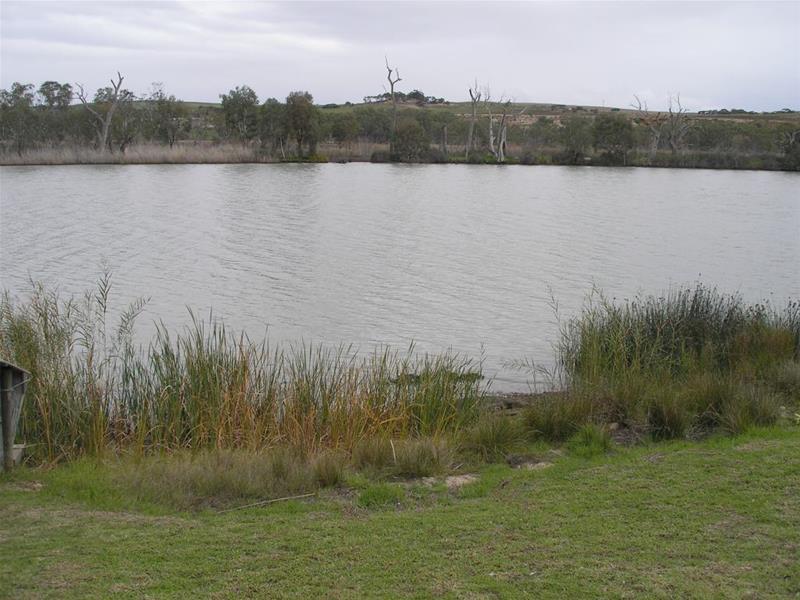 Site 4A Teal Flat Road, Teal Flat, SA 5238