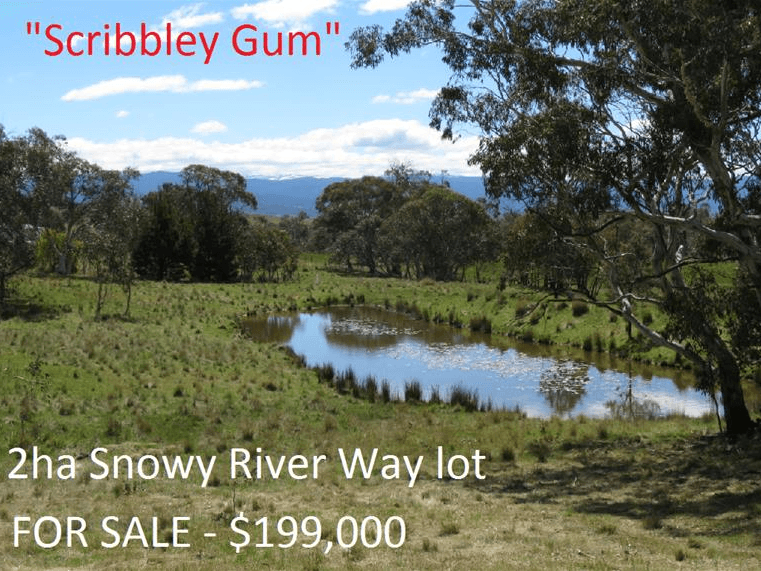 7230 Snowy River Way, Jindabyne, NSW 2627