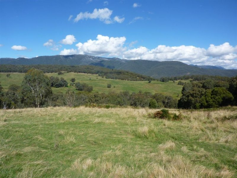 1 Maragle Road, Tumbarumba, NSW 2653