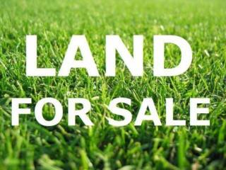 Lot 1409 Brooks Reach Estate, Horsley, NSW 2530