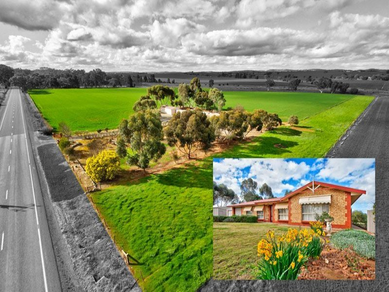 1508 Barrier Highway, Saddleworth, SA 5413