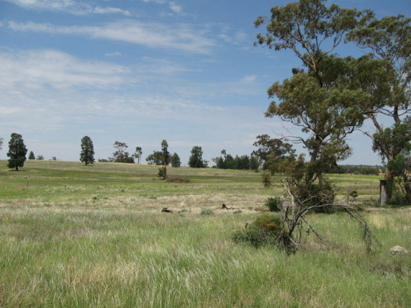 Lot 457 Newell Highway, Trewilga, NSW 2869