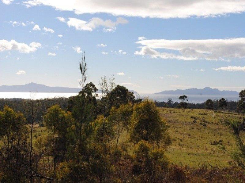 192 Bresnehans Road, Little Swanport, Tas 7190