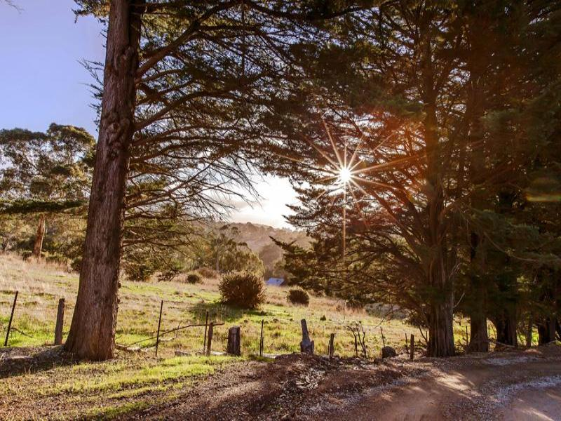 38 Nicholls Road, Norton Summit, SA 5136