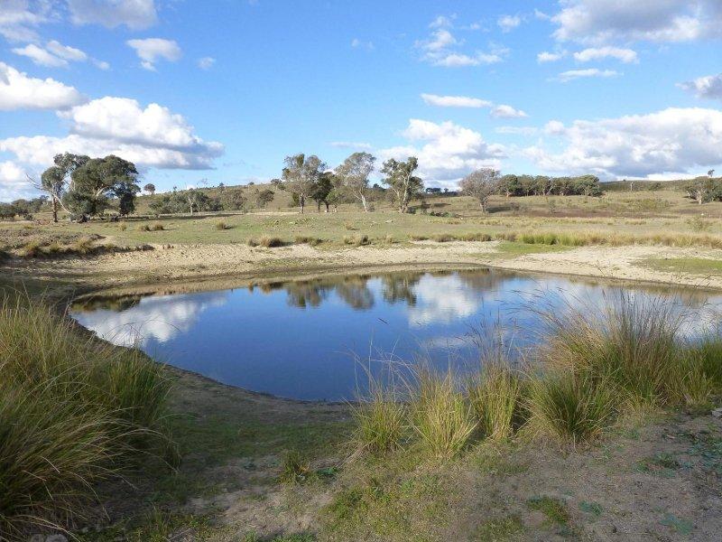 249 Beragoon Lane, Taylors Flat, NSW 2586