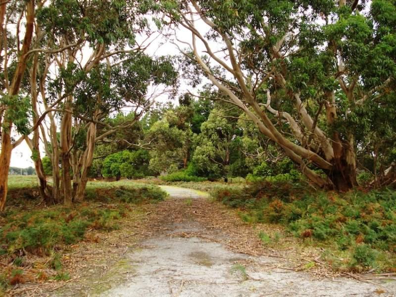1868 South Road, Pearshape, Loorana, Tas 7256