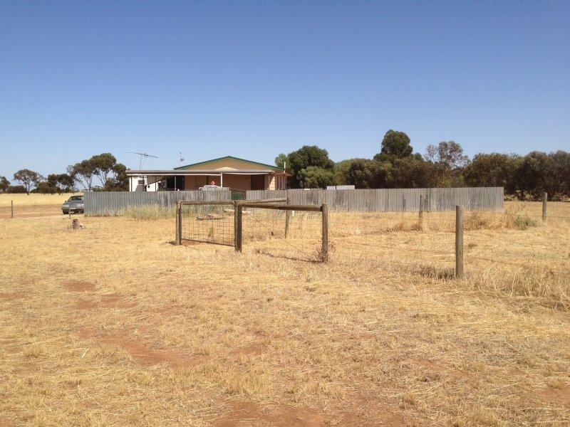 541, Owen-Mallala road, Owen, SA 5460