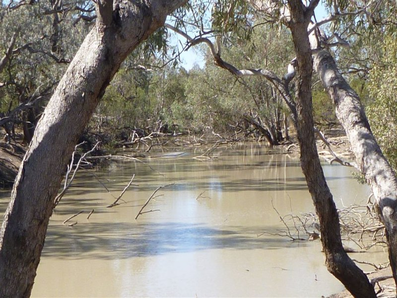 """ Nidgery Downs"", Nyngan, NSW 2825"
