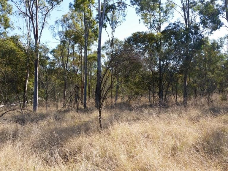 Lot 7 Kingaroy Cooyar Road, Nanango