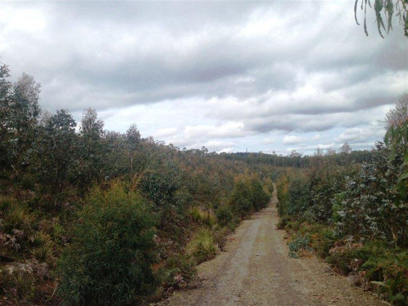 270 Bardenhagen Road, Mount Direction, Tas 7252