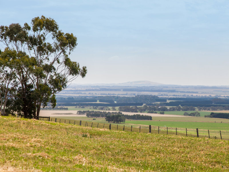 1130 Winchelsea-Deans Marsh Road, Bambra, Vic 3241